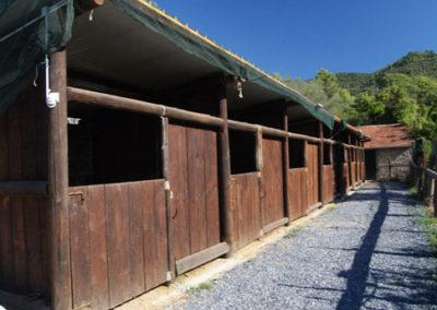 Piccolo-Ranch-San-Bartolomeo-al-mare-Foto-2