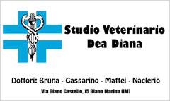 Studio Veterinario Dea Diana