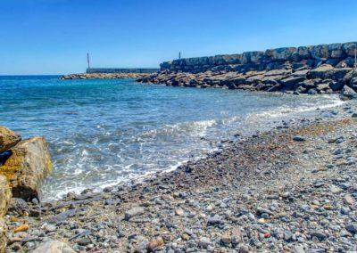 spiaggia-animali-golfo-dianese-1