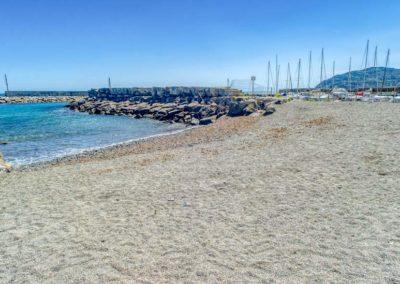 spiaggia-animali-golfo-dianese-2