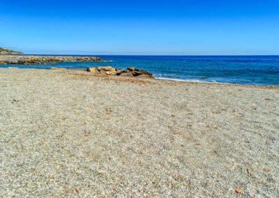 spiaggia-animali-golfo-dianese