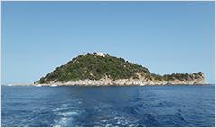 La bellissima Isola Gallinara