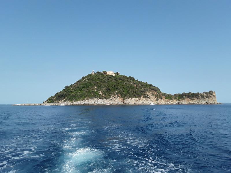 Isola Gallinara - Forma tartaruga